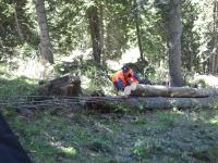 Лебедки за влачене на дърва