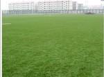 изкуствена трева по поръчка