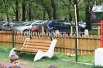 изработка на дървени огради за обществена градинка
